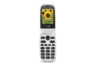 Phone Easy 6030