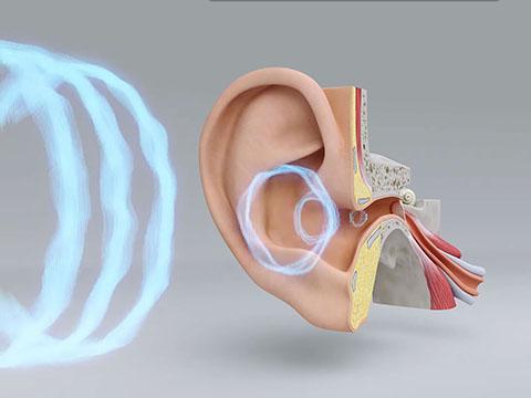 Comment l'ouïe fonctionne